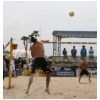 AVP Volleyball HB 95.JPG