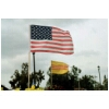 11 American + South Vietnam Flags
